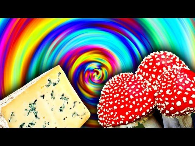 10 Foods That Can Get You High