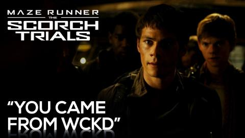 """Maze Runner: THE SCORCH TRIALS 