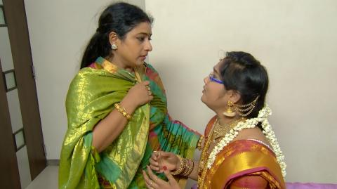 Priyamanaval Episode 262,  30/11/15