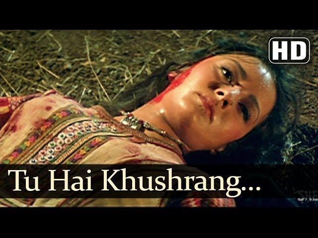 Tu Hain Khush Rang Sad Hd Henna Songs Rishi Kapoor Zeba