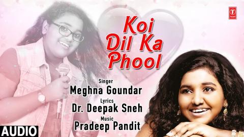 Phool Shabnam Latest Hindi Single Track Full (Audio) Meghna Goundar