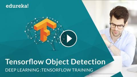TensorFlow Object Detection | Real-Time Object Detection using