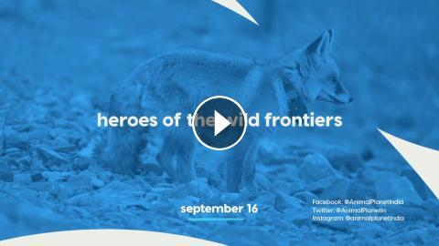 The Brave Guardians of India's Wild Treasures | Heroes of